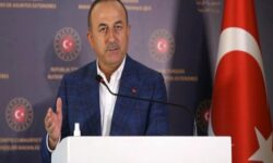 çavuşoğlu twit