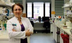 mikrokürecik-aşısı-nesrin-özören