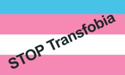 bandera-trans